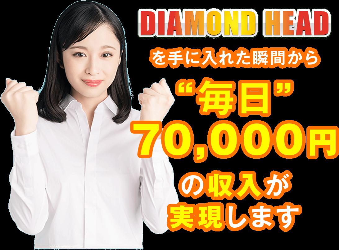 DIAMOND HEAD LP2画像